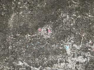 海の写真・画像素材[543985]