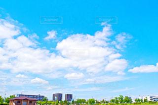 夏空の写真・画像素材[727350]