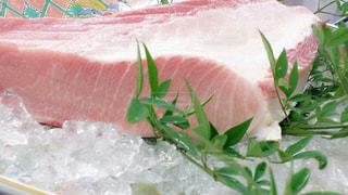 魚 - No.548053