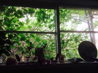 花の花瓶が窓の前で座っています。の写真・画像素材[1209578]