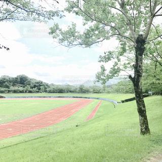 No.602181 公園