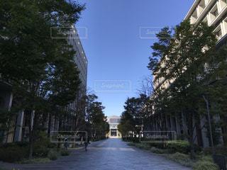空の写真・画像素材[1095411]
