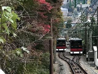 秋の写真・画像素材[1095415]