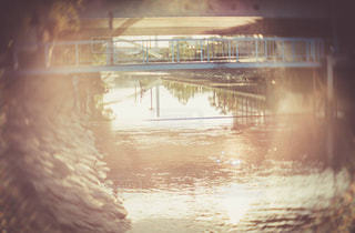 風景の写真・画像素材[555419]