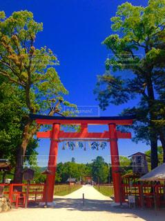 京都 - No.548819