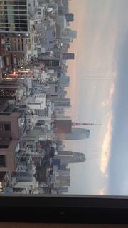 東京タワーの写真・画像素材[549279]