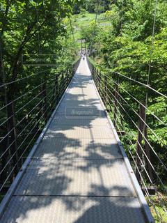 橋の写真・画像素材[549295]
