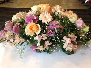 花の写真・画像素材[557029]