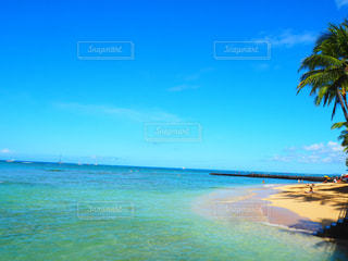 海の写真・画像素材[550259]