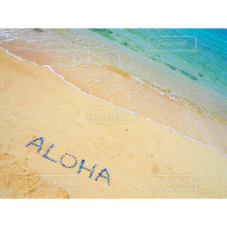 海の写真・画像素材[563995]