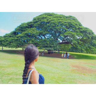 緑の草原の女の写真・画像素材[1230198]