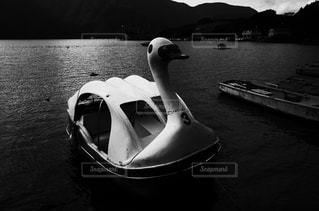 モノクロの写真・画像素材[550621]
