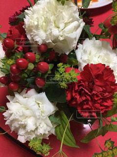 近くの花のアップ - No.798459