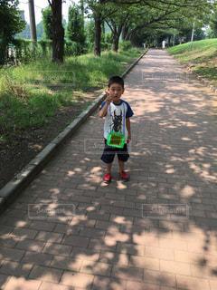 夏の写真・画像素材[599745]