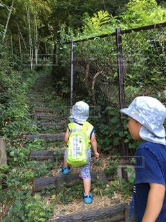 森の横に立っている少年の写真・画像素材[854342]