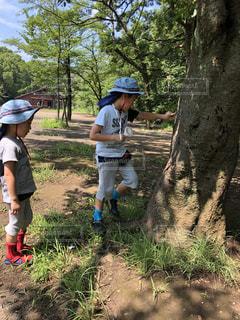 木の隣に立っている人々のグループの写真・画像素材[2321127]