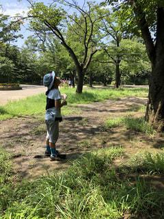 木の隣に立っている男の写真・画像素材[2321129]