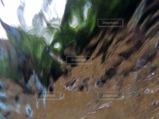 水の写真・画像素材[556026]