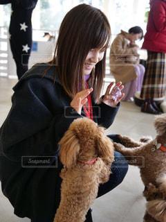 犬と戯れる女性の写真・画像素材[2884720]