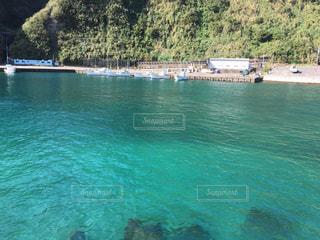 八丈島の写真・画像素材[555583]