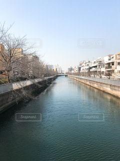 水の体の上の橋清澄白河にて撮影の写真・画像素材[1179207]