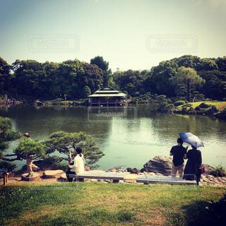清澄庭園の写真・画像素材[1290900]