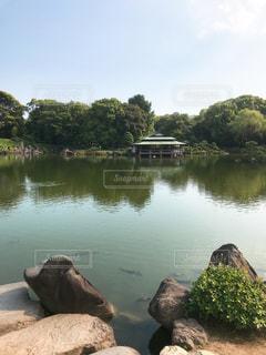 清澄庭園の写真・画像素材[1290920]
