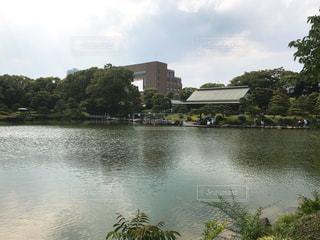 清澄庭園の写真・画像素材[1290924]