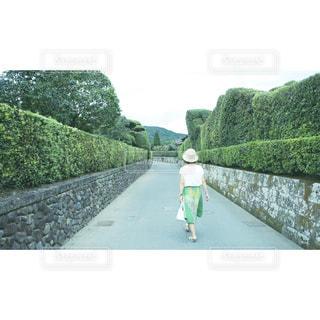 鹿児島の写真・画像素材[555686]