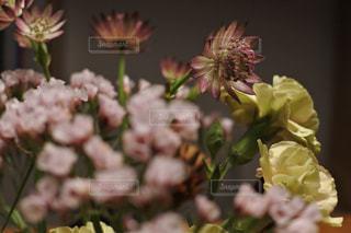 花束のアップの写真・画像素材[1655867]