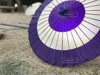 傘の写真・画像素材[556143]