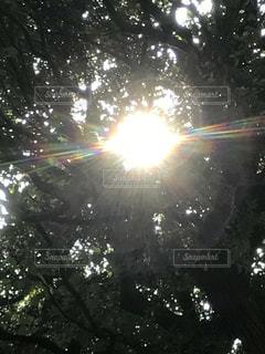 空の写真・画像素材[598534]