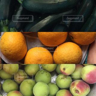 収穫の写真・画像素材[558408]