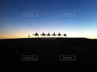 砂漠の写真・画像素材[560025]