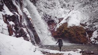 冬の写真・画像素材[558597]