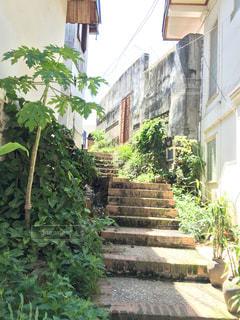 石造りの階段の写真・画像素材[1011010]