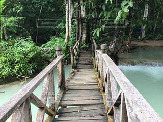 川にかかる木製の橋の写真・画像素材[1011012]