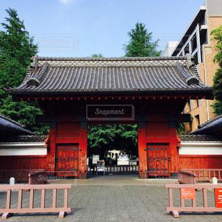 東京の写真・画像素材[559846]