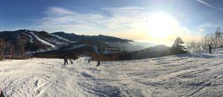 焼額山スキー場の写真・画像素材[1146012]
