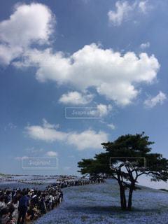 空の写真・画像素材[659054]