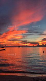 夕日の写真・画像素材[1525379]