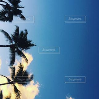 空の写真・画像素材[560424]