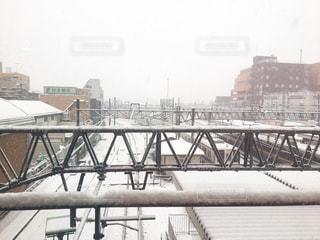雪の中走る列車の写真・画像素材[971406]