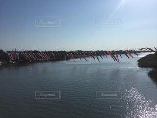 川の写真・画像素材[560980]