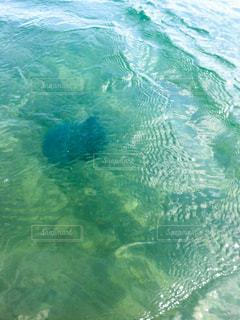 海の写真・画像素材[672323]