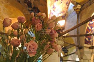 花の写真・画像素材[587859]