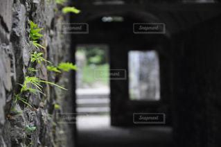 ノスタルジーの写真・画像素材[562777]