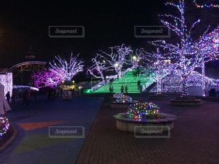 夜のライトアップされた遊園地 - No.1029899