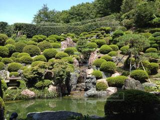 背景の水の庭 - No.1029900