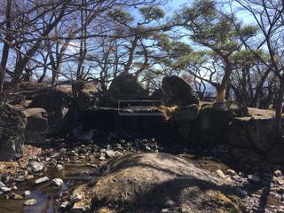 高島城公園の滝の写真・画像素材[1040011]
